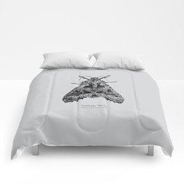Cabbage Moth [Mamestra brassicae] Comforters
