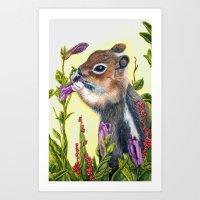 charmaine Art Prints featuring Chipmunk eating a flower print by Charmaine Diedericks