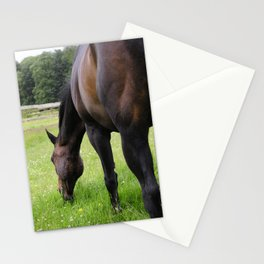 Grazing horse Stationery Cards