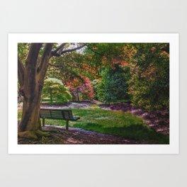 The Park Bench Art Print