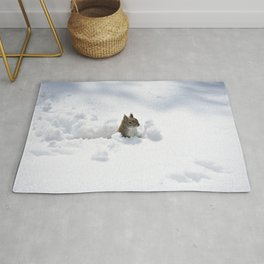 Red Squirrel in Snow Rug