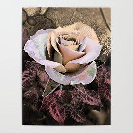 Vintage rose 2 Poster