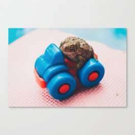 Adventures of Toad 1 Canvas Print