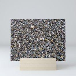 What Stories You Could Tell... Rocks of Jasper Beach Mini Art Print