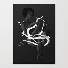 Little Glimpses Canvas Print