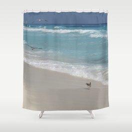 Carribean sea 8 Shower Curtain