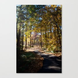 Kiroli Park, part two Canvas Print
