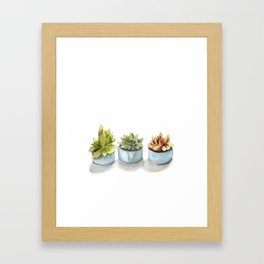 Succulents watercolor painting Framed Art Print