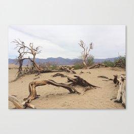 Dali's Death of a Tree Canvas Print