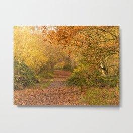 Autumn Lane Metal Print