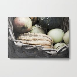 Apples and pumpkins in a basket Metal Print