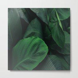 Green Nature Deep Leaves Metal Print