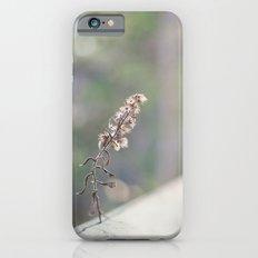 Coquette fence iPhone 6s Slim Case