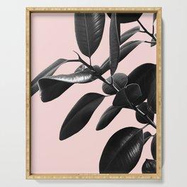 Ficus Elastica Blush Black & White Vibes #1 #foliage #decor #art #society6 Serving Tray