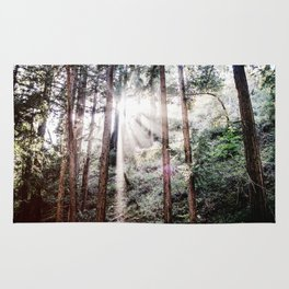 Big Sur Forest Sunbeams Rug