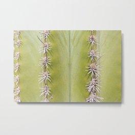 Green Cactus closeup - nature macro 2r Metal Print