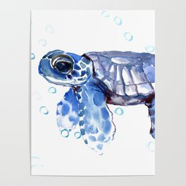 Baby Blue Turtle Poster