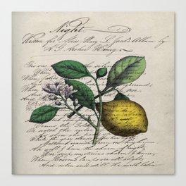 vintage Mediterranean summer fruit orchard citrus blossom yellow lemon Canvas Print