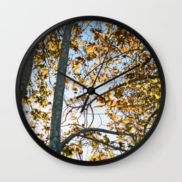Gold in Autumn Wall Clock