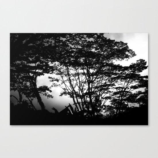 Hilo Misty Morning Canvas Print