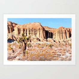 Cactus in the desert with blue sky Art Print