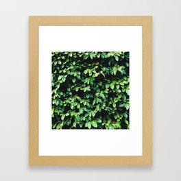 Leaf Me Alone. Framed Art Print