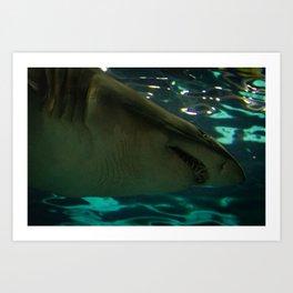 Shark #1 Art Print