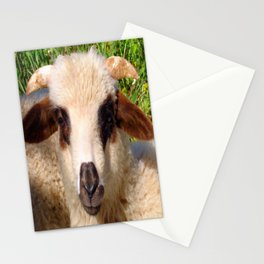 Sheep Portrait Close Up Stationery Cards