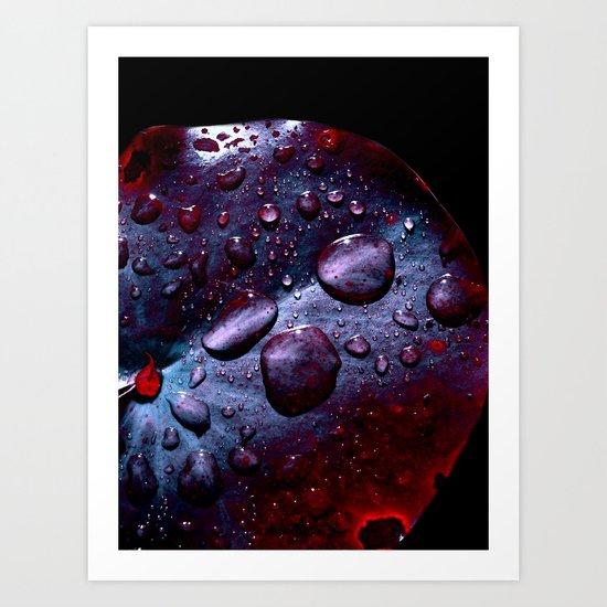 lily pad XIII Art Print