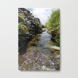 Brook, Stream, or Something Like It Metal Print