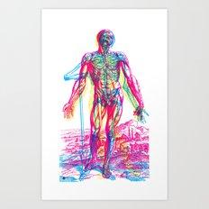 Andreae Vesalii RGB 2 Art Print