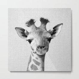 Baby Giraffe - Black & White Metal Print