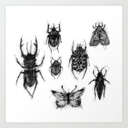 Cacography in Entomology Art Print