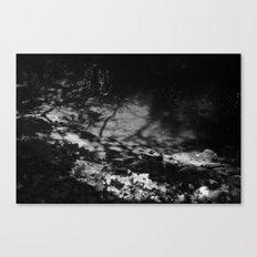 shade thrown Canvas Print