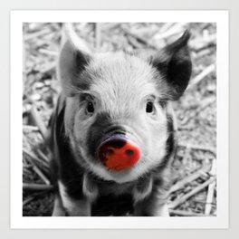 BW splash sweet piglet Art Print