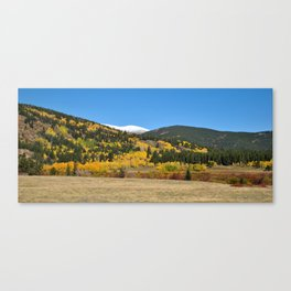 The First Fall Canvas Print
