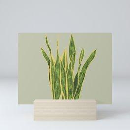 Sansevieria on Green Background Mini Art Print