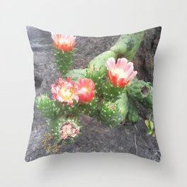 A cactus in its bloom Throw Pillow