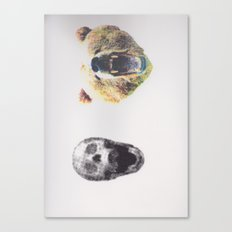 Skullz and Bearz Canvas Print