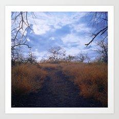 Hawaiian Trail Art Print