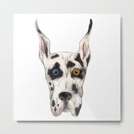 German Dog Metal Print