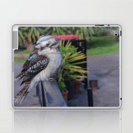 Kookaburras Laptop & iPad Skin