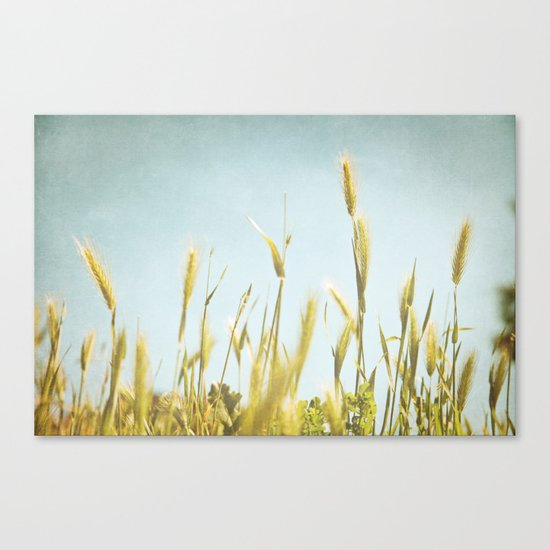 Hazy Lazy Skies Canvas Print