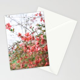 Easter Blooms Stationery Cards