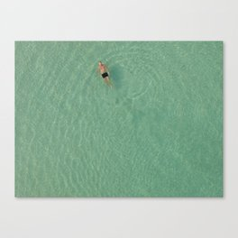 Aerial Swim Canvas Print