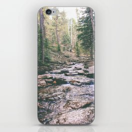 Just Around the Riverbend iPhone Skin