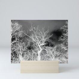 Naked trees forest, negative black and white photo Mini Art Print