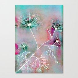 Funky Fennel Fireworks Canvas Print