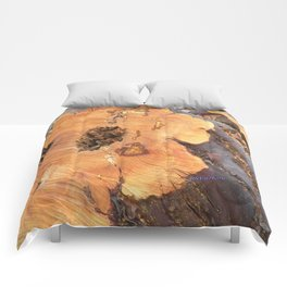 TEXTURES - Manzanita in Drought Conditions #2 Comforters