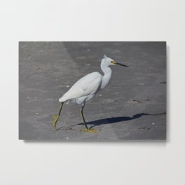 In Cold Pursuit Metal Print
